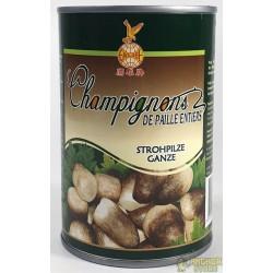 CHAMPIGNON DE PAILLE - 0.425Kg